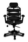 Компьютерное кресло Hara Chair Pascal нерегулируемые подлокотники